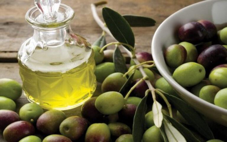 maslinovo-ulje-istra-slika-59657175